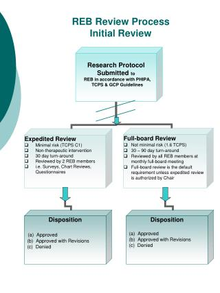 REB Review Process Initial Review