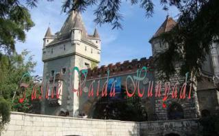 Castle Vaida Hunyadi