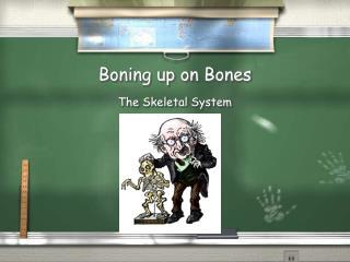 Boning up on Bones
