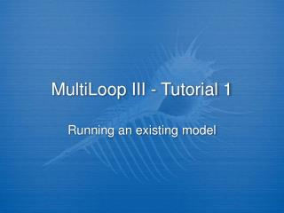 MultiLoop III - Tutorial 1