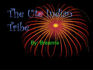 The Ute Indian Tribe