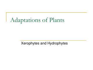 Adaptations of Plants