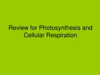 Review for Photosynthesis and Cellular Respiration