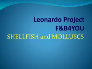 Leonardo Project FB4YOU