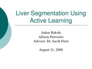 Liver Segmentation Using Active Learning