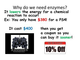 Why do we need enzymes?