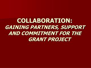 COLLABORATION:  GAINING PARTNERS, SUPPORT AND COMMITMENT FOR THE  GRANT PROJECT