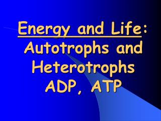 Energy and Life :  Autotrophs  and  Heterotrophs  ADP, ATP