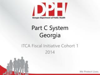 Part C System Georgia