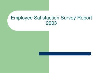 Employee Satisfaction Survey Report 2003