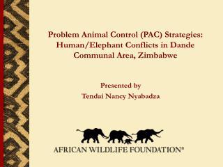Presented by Tendai Nancy Nyabadza