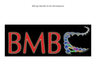 BMB  Logo, Right DNA, No Text, Black Background