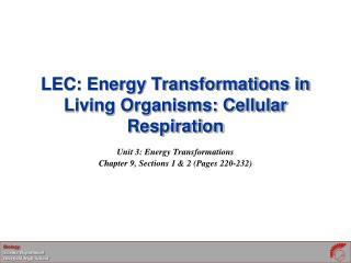 LEC: Energy Transformations in Living Organisms: Cellular Respiration
