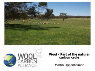 Wool - Part of the natural carbon cycle Martin Oppenheimer