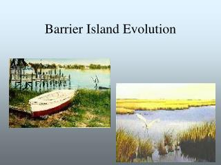 Barrier Island Evolution