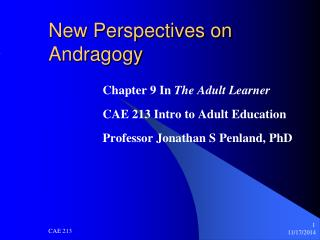 New Perspectives on Andragogy