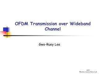 OFDM Transmission over  Wideband Channel