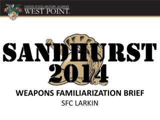WEAPONS  FAMILIARIZATION BRIEF SFC LARKIN