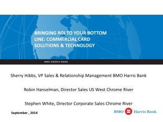 Sherry Hibbs, VP Sales & Relationship Management BMO Harris Bank