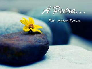 A Pedra... Por: Antonio Pereira