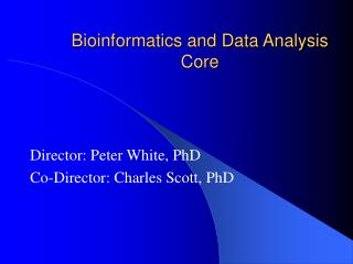 Bioinformatics and Data Analysis Core