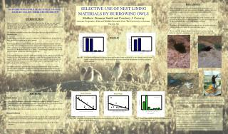 SELECTIVE USE OF NEST LINING MATERIALS BY BURROWING OWLS