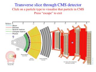 Transverse slice through CMS detector Click on a particle type to visualise that particle in CMS