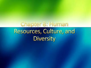 Chapter 8: Human Resources, Culture, and Diversity