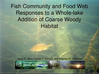 Fish Community and Food Web Responses to a Whole-lake Addition of Coarse Woody Habitat