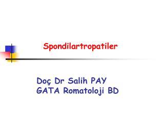 Spondilartropatiler