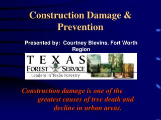 Construction Damage & Prevention