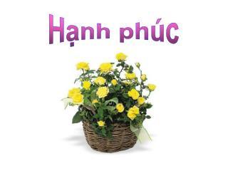H?nh ph�c