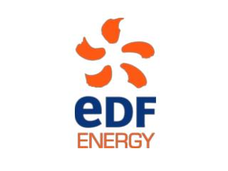 EDF ENERGY - EDRP  Lessons learned summary overview 04 th  February 2010. Martin Bell