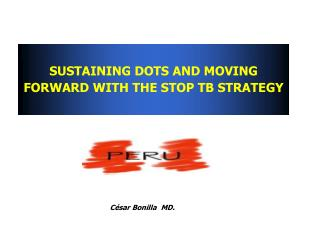 SUSTAINING DOTS AND MOVING FORWARD WITH THE STOP TB STRATEGY