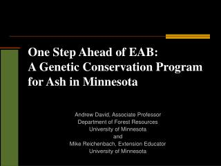 One Step Ahead of EAB:   A Genetic Conservation Program for Ash in Minnesota