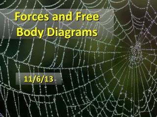 Forces and Free Body Diagrams