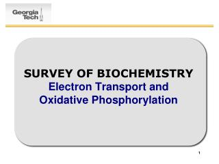 SURVEY OF BIOCHEMISTRY Electron Transport and  Oxidative Phosphorylation