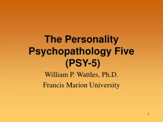 The Personality Psychopathology Five  (PSY-5)