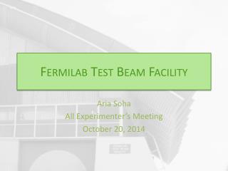 Fermilab Test Beam Facility