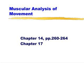 Muscular Analysis of Movement