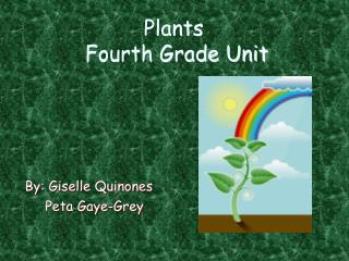 Plants  Fourth Grade Unit