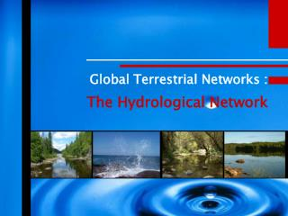 Global Terrestrial Networks : The Hydrological Network