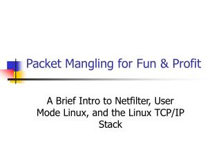 Packet Mangling for Fun  Profit