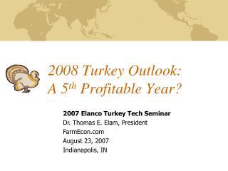 2008 Turkey Outlook: A 5 th  Profitable Year?
