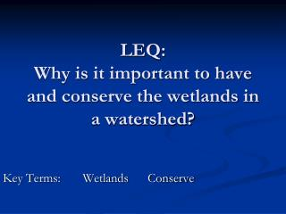 LEQ: Why is it important to have and conserve the wetlands in a watershed?