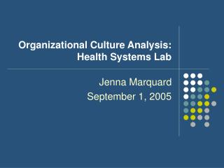 Organizational Culture Analysis: Health Systems Lab