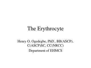 The Erythrocyte