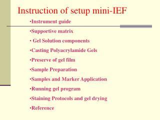 Instruction of setup mini-IEF