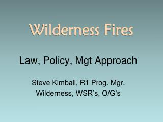 Wilderness Fires