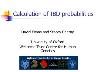 Calculation of IBD probabilities